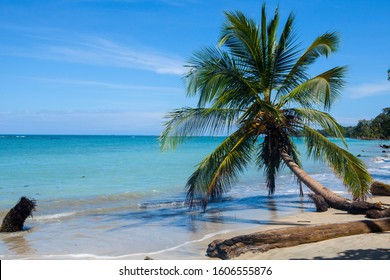 Stunning beauty of Caribbean coast, Costa Rica
