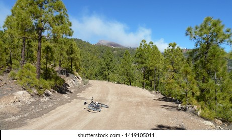 Stunning clouds and mountain forest landscape. Pines along country road with bycicle of photografer. Bright blue sky and beautiful white clouds. Tenerife, Canary islands