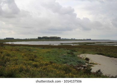 a stunning colorful salt marsh in winter in stormy weather
