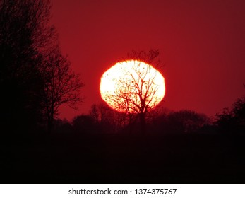 stunning coloured sunrise with wintertree silhouette and big sun in Groningen