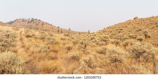 Stunning and desolate desert scenery near Kamloops, British Columbia, Canada
