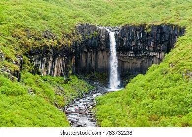 Stunning Icelandic Scenery of Svartifoss Waterfall in Skaftafell - Iceland