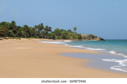 """Stunning landscape of La Perle sandy beach, in Guadeloupe island, Basse Terre, French territory. The beach is the set of British tv series """"Death in Paradise""""."""