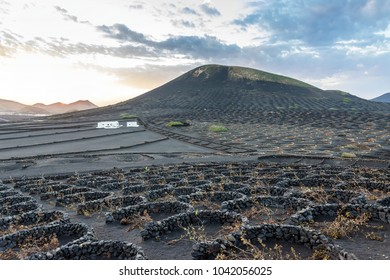 stunning landscape with sunset on volcanic vineyards in La Geria, Lanzarote. La Geria is the most famous wine area of Canary Islands.