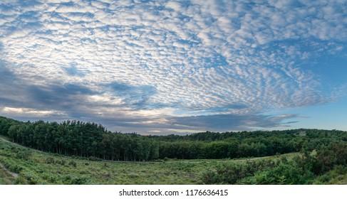 Stunning mackerel sky cirrocumulus altocumulus cloud formations in Summer sky landscape