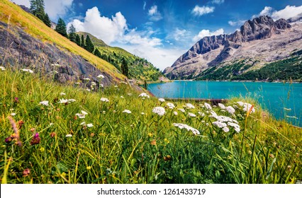 Stunning morning view of Fedaia lake. Colorful summer scene of Dolomiti Alps, Gran Poz location, Trentino-Alto Adige/Sudtirol region, Italy, Europe. Beauty of nature concept background.