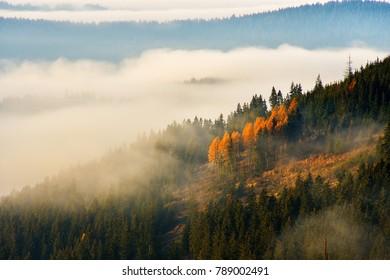 Stunning nature with misty landscape,Holbav village,Carpathians,Transylvania,Romania,Europe