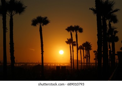 Stunning orange and yellow summer sunset with palm trees and the Huntington Beach, CA Pier in the background.