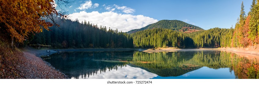 stunning panorama of mountain lake in autumn. Beautiful Scenery of high altitude Synevyr Lake among spruce forest, the most visited landmark in Ukrainian Carpathians.