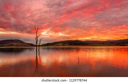 Stunning rich red full  cloud sunset and reflections in the lake and  some dead trees for contrast. Australian sunsets