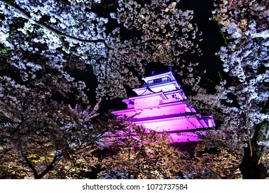 A stunning scene of  Tsuruga-jo castle surrounded by full bloom of Cherry blossom tree during light up at night time, Aizuwakamatsu Wakamatsu Fukushima Japan.Focus on Castle and blurred Sakura.