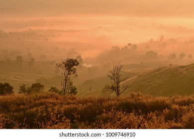 A stunning scereny of mountain layer with foggy forest on the hill after sunrise at Loei province, Thailand.