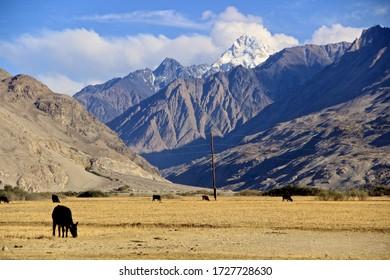 Afghanistan Landscape