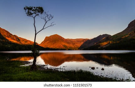 Stunning silhouette of a lone small birch tree and the surrounding mirror lake reflection and mountains of Buttermere in the Lake District in Cumbria, England UK.