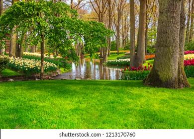 Stunning spring landscape, breathtaking Keukenhof garden with colorful fresh tulips, daffodil flowers and lake in background, Netherlands, Europe