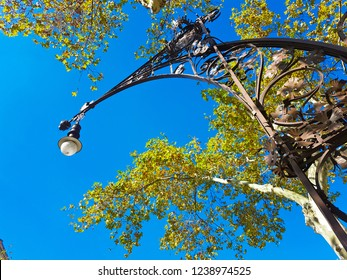 Stunning street light with beautiful natural background featuring clear blue ksy and bright green tree leaves in the El Raval neighbourhood, Barcelona, Spain.
