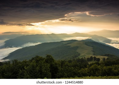 stunning summer sunrise foggy landscape, majestic morning dawn view on valley covered mist, stunning mountains nature image, Carpathians, Ukraine, Europe