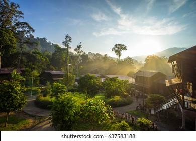 Stunning Sunrise at National Park (taman Negara) Endau Rompin Selai in Johor Malaysia