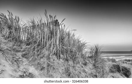 Stunning sunrise over sand dunes system on yellow sand golden beach