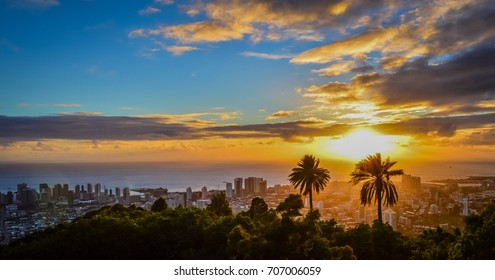Stunning sunset view of downtown Honolulu, Hawaii as seen from the iconic Tantalus Overlook lookout point with palm tree silhouettes in the sunlight, bright orange clouds, and the ocean horizon