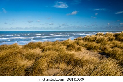 Stunning view over marram grass covered dunes towards the North Sea at Bray-Dunes, France
