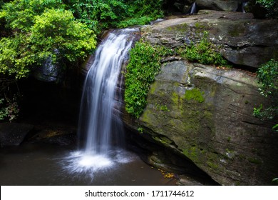 Stunning Waterfall Cascading into a Pool in a Lush Australian Rainforest at Buderim Forest Park