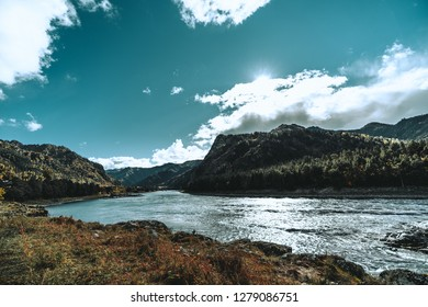 A stunning wide-angle view of the riverbank in the mountains; Katun river surrounded by hills overgrown with autumn native grasses and coniferous forests, Altai district, Russia, sunny afternoon