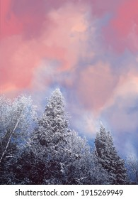 Stunning winter frosty landscape. The tops of coniferous trees in the snow against a handdrawn blue-pink sky. Cold winter day. Copspace.