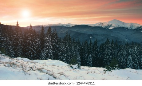 stunning winter landscape, picturesque morning dawn view on, beautiful sunrise in mountains, stunning nature image,  Chornogora ridge, Goverla,  Carpathians, Ukraine, Europe