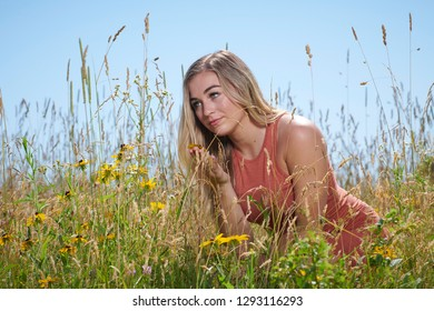 Stunning young blonde woman in summer dress standing in field of flowers and tall grass