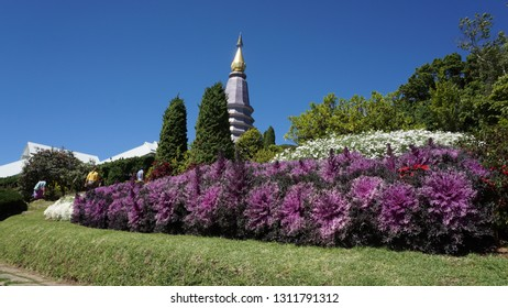 Stupa in a temple of Chiang Mai