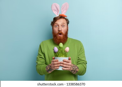 Stupefied bearded adult man wears bunny long ears on head, carries Easter symbols, opens mouth from wonder, holds pot with colored eggs, wears green sweater, poses indoor. Spring time concept