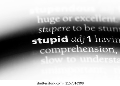 stupid word in a dictionary. stupid concept.
