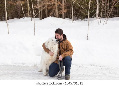 Sturdy brown-haired young man kneeling on icy countryside road to pet his huge Pyrenean Mountain Dog looking up adoringly