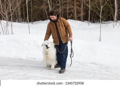 Sturdy brown-haired young man standing on icy countryside road petting his huge Pyrenean Mountain Dog enjoying it with a goofy expression