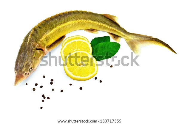 Sturgeon fish with lemon, pepper and green leaves isolated on white background