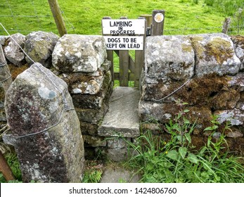 A style over a dry stone wall with a notice reading lambing in progress, all dogs must be kept on a lead.