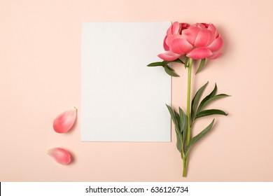 Styled feminine flat lay on pale peach background, top view.Minimal woman's desktop with blank page mock up and peony flower with petals. Creative concept, greeting card. Vertical template