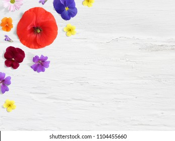 Styled stock photo. Feminine desktop floral composition with wild and edible garden flower. Poppy, pansy geranium and potentilla blooms. Empty space and shabby white background. Flat lay, top view.