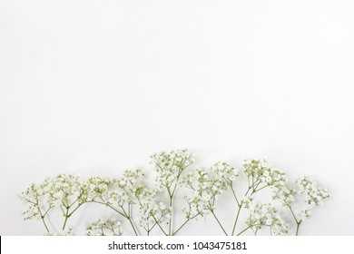 Styled stock photo. Feminine wedding desktop with baby's breath Gypsophila flowers on  white background. Empty space. Floral frame, web banner. Top view. Picture for blog or social media.