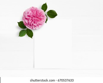 Styled stock photo. Feminine wedding desktop mockup with pink English rose flower and white empty paper card. Floral composition on old white wooden background. Top view. Flat lay picture.