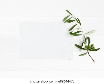 Styled stock photo. Feminine wedding desktop mockup with green olive branch and white empty paper card. Foliage composition on old white wooden background. Top view. Flat lay picture.