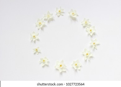 Styled stock photo. Spring, Easter feminine scene floral composition. Round frame wreath pattern made of narcissus, daffodil flowers. White background. Flat lay, top view.