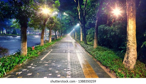 Styled wide angle view of illuminated green tree alley and pedestrian brick road in Chinese Shenzhen tonight