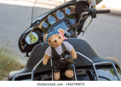 Stylish bear in motorcycle clothes on a motorcycle