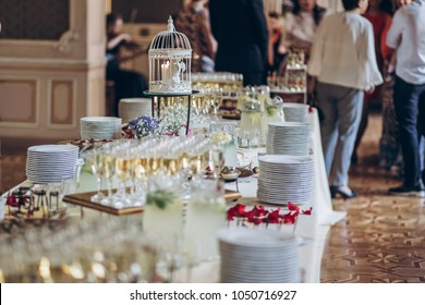 stylish bird cage decor and champagne glasses, food appetizers on table at wedding reception. luxury catering and arrangement at celebrations. serving food and drinks at events