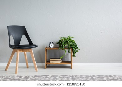 Stylish black chair next to shelf with two books, clock and green plant in pot, real photo with copy space on the wall
