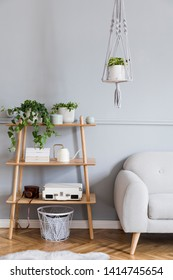Stylish and boho home interior of living room with wooden shelf, gray sofa, design and elegant accessories, hand made macrame shelf planter hanger. Botany and minimalistic home decor with plants.