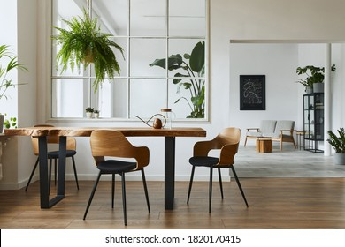 Stylish and botany interior of dining room with design craft wooden table, chairs, a lof of plants, big window, poster map and elegant accessories in modern home decor. Template. - Shutterstock ID 1820170415