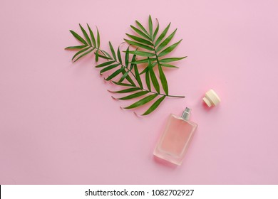 stylish bottle of perfume with spray of palm green leaves on pink background. creative trendy flat lay with space for text. modern image. perfumery and fresh scent concept